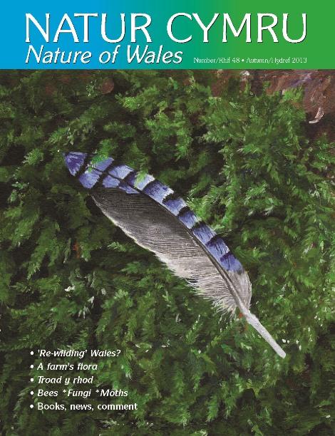 Natur Cymru Issue 48 cover