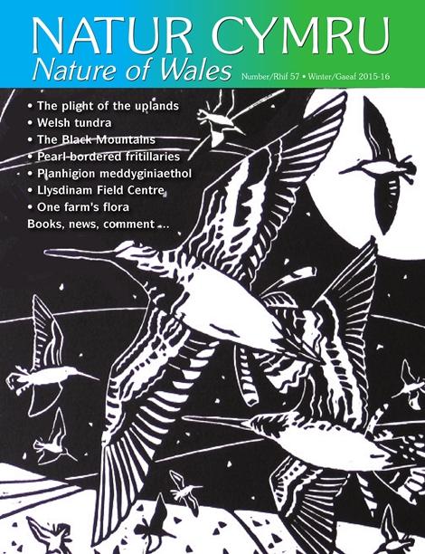Natur Cymru Issue 57