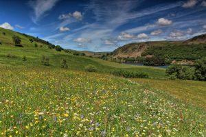 Elan Valley by Sorcha Lewis